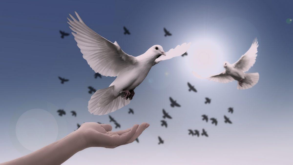 Barış Üzerine Çeşitlemeler