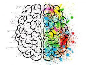 Beynimin Sağ Yarımküresi