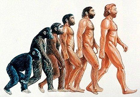 Evrimci Yaratılış