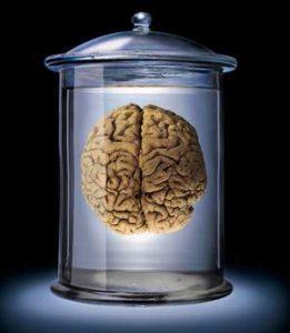 Beyin Dalgaları
