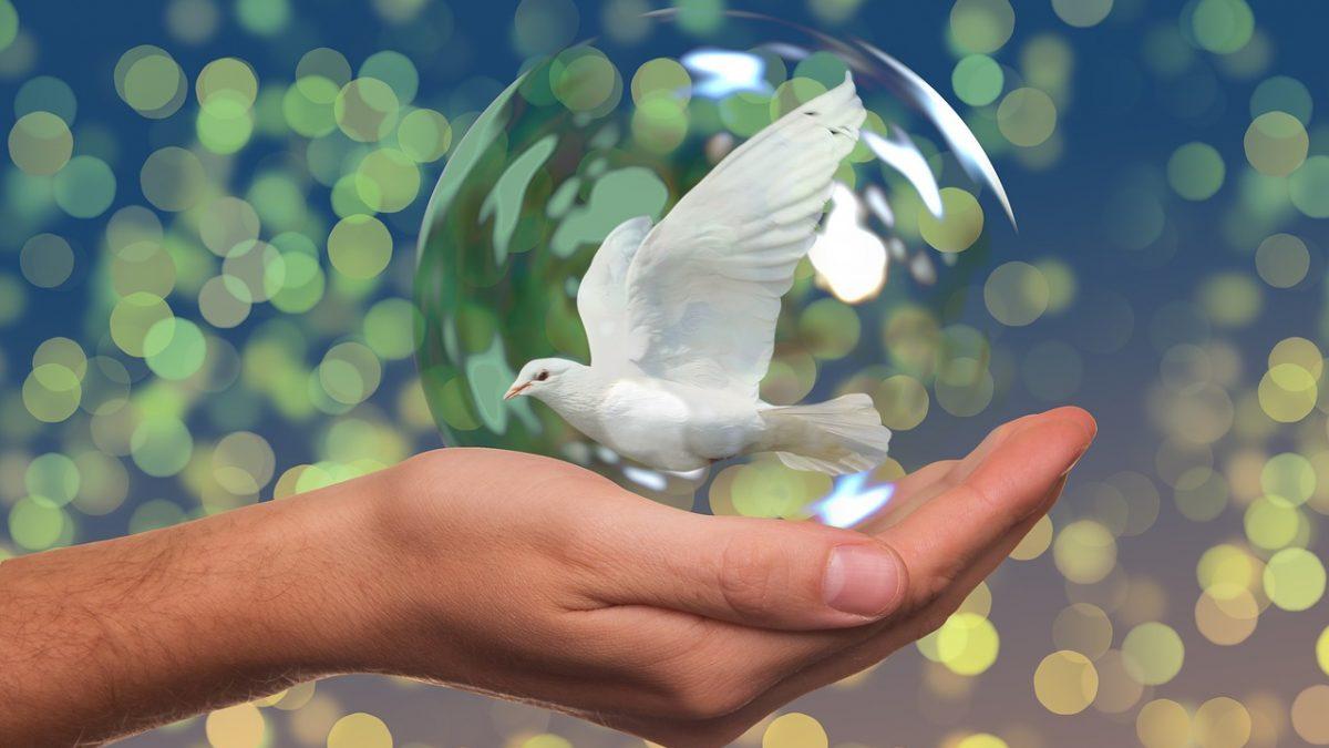 Dünya'da Barış (mı?)