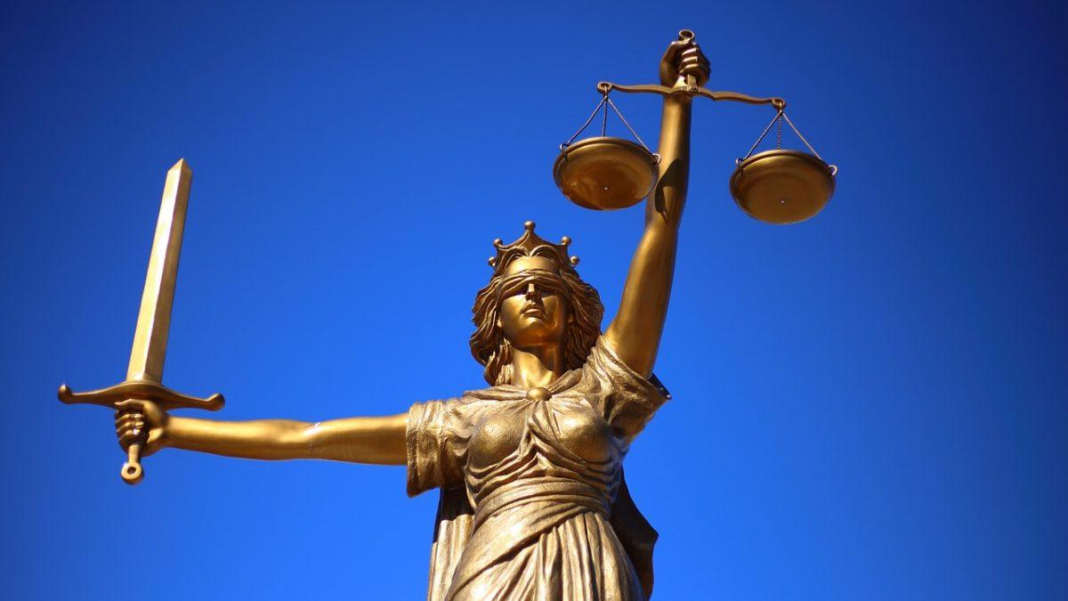 Hukuk İşi mi, Guguk Kuşu mu?