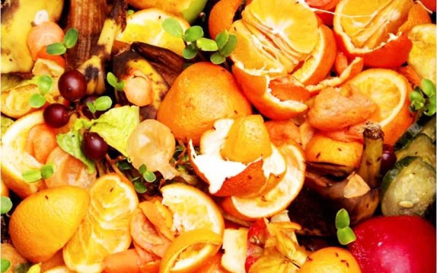 Mutfakta Kompost