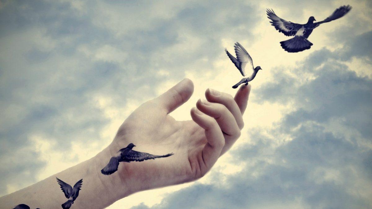 Affederek Özgürleşmekte Buluşalım