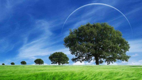 1 Ağustos Aslan Yeniayının Etkileri